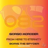 From Here to Eternity (Boris the Spyder Acid Rub Remix) de Giorgio Moroder