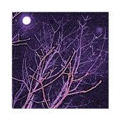 Winterwood Revealed (Live Vipers & Studio Doves) fra Jacob Fred Jazz Odyssey