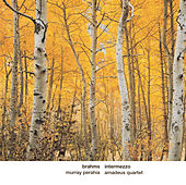 Brahms: Intermezzo von Murray Perahia