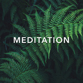 Meditation fra Relaxing Music Therapy