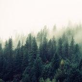 Sounds of Nature | Beautiful Music | Spa & Sleep de Musica Relajante