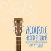 AH Performs Cat Stevens von Acoustic Heartstrings