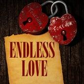 Endless Love de Music-Themes