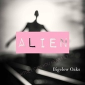 Alien fra Bigelow Oaks