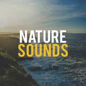 Nature Sounds by Nature Therapy