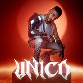 Unico by Fred De Palma