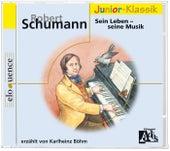 Robert Schumann: Sein Leben by Karlheinz Böhm