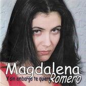 Y Sin Embargo Te Quiero de Magdalena Romero