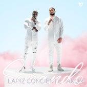 Soñando van Lapiz Conciente