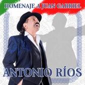 Homenaje a Juan Gabriel de Antonio Rios