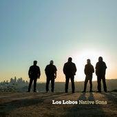 Jamaica Say You Will / Flat Top Joint de Los Lobos
