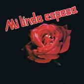 Mi Linda Esposa by Various Artists
