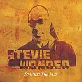 So What The Fuss de Stevie Wonder