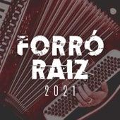 Forró Raiz 2021 von Various Artists