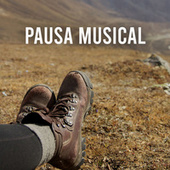 Pausa Musical von Various Artists