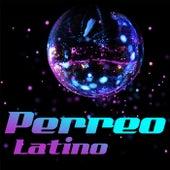 Perreo Latino de Various Artists