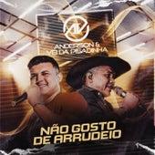 Não Gosto de Arrudeio (Ao Vivo) von the anderson