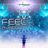 Avalon von Feel
