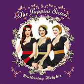 Wuthering Heights by The Puppini Sisters