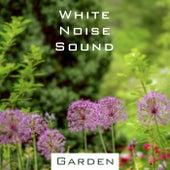 鋼琴白噪音ASMR‧大自然活力花園 de 貴族音樂Asmr