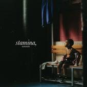 Stamina, Memento de Dinos