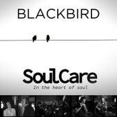 Blackbird by Soulcare