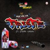 Muchacha Triste by Banda Tierra Mojada