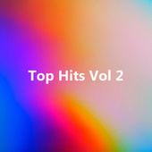 Top Hits Vol 2 by Various Artists