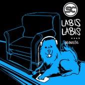 Labis-labis - Acoustic Version by Sponge Cola