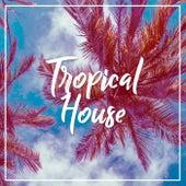 Tropical House de Ibiza Lounge