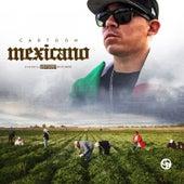 Mexicano de Cartoon