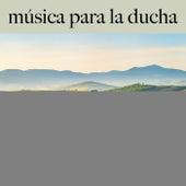 Música para la Ducha: Finest Lounge & Bar Sounds by ALLTID