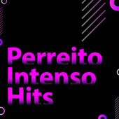 Perreito Intenso Hits de Various Artists