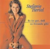 Es ist gut, dass es Freunde gibt von Stefanie Hertel