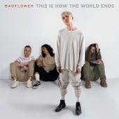 Family by Badflower