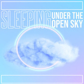 Sleeping under the Open Sky: Nature Sounds for Deep Sleep by Peaceful Sleep Music Collection