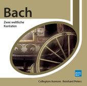 Bach: Zwei weltliche Kantaten de Collegium Aureum