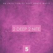 2 Deep 2 Nite, Vol. 5 by Various Artists
