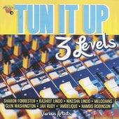 Tun It Up (3 Levels) von Various Artists