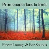 Promenade dans la forêt: finest lounge & bar sounds by ALLTID