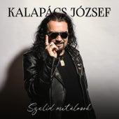 Kalapács József - Szelíd metálosok by Various Artists
