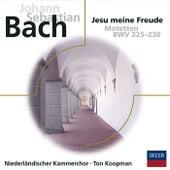 Bach Motetten BWV 225 - 230 de Netherlands Chamber Choir
