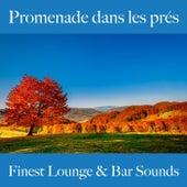 Promenade dans les prés: finest lounge & bar sounds by ALLTID