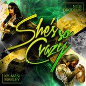 She's So Crazy by Nick Brodeur
