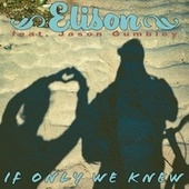 If Only We Knew by Elison