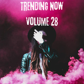 Trending Now Volume 28 by Various Artists