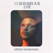 Coldharbour Lane by Myele Manzanza
