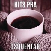 Hits pra Esquentar de Various Artists
