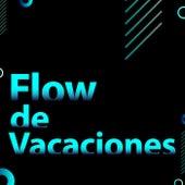 Flow de Vacaciones by Various Artists