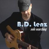 Sole Searching de B.D. Lenz